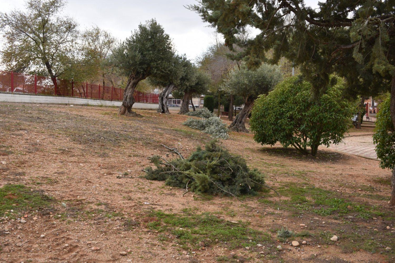 Limpieza parque barrio Asturias